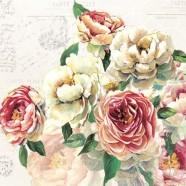 Salvrätikud roos Elisabeth