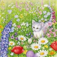 Salvrätikud kassi ja lilledega