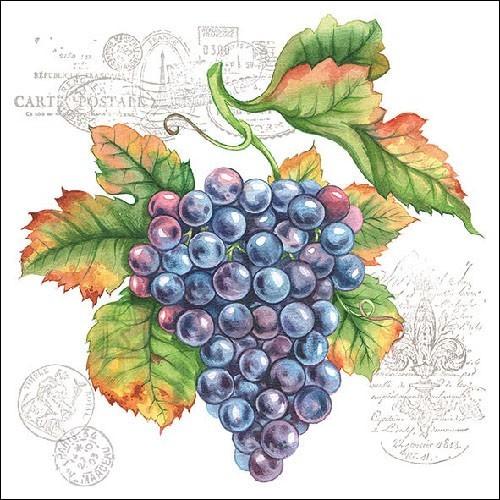 Salvrätikud viinamarjadega