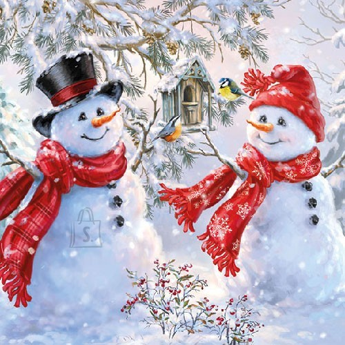 Salvrätikud lumememmedega