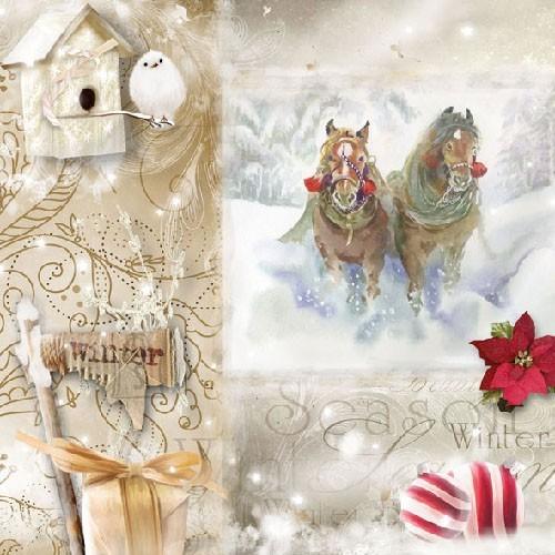 Salvrätikud jõulupildiga