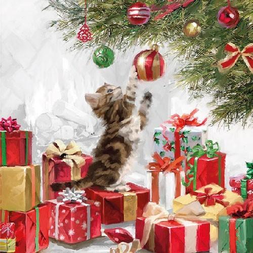 Salvrätikud kassi ja jõulukingitustega