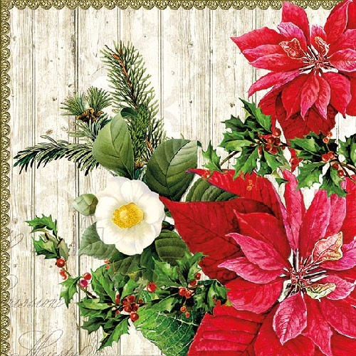 Salvrätikud jõululilledega