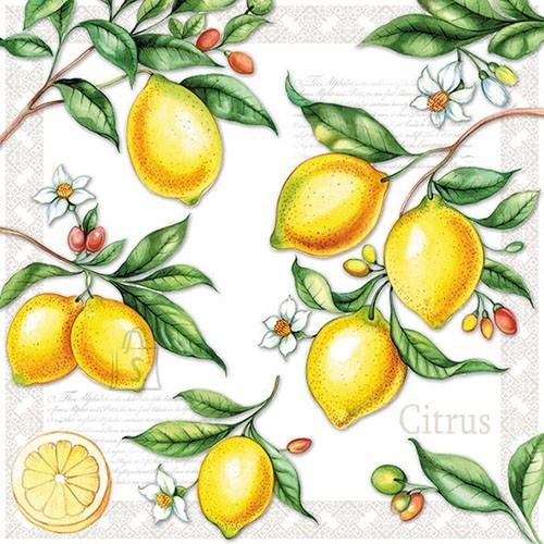 Salvrätikud sidrunitega