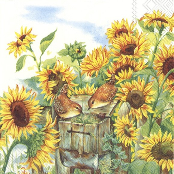 Salvrätikud lindude ja lilledega