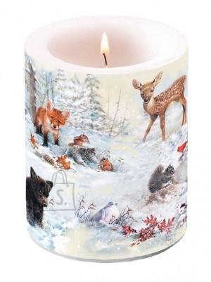 Küünal loomadega lumises metsas