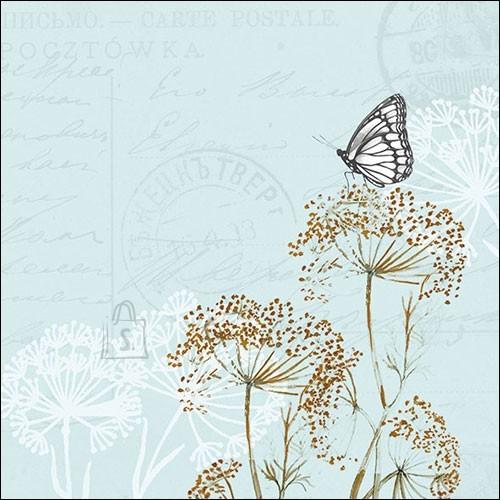 Salvrätikud liblikaga