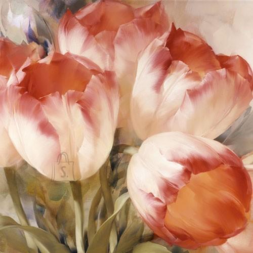 Salvrätikud tulpidega