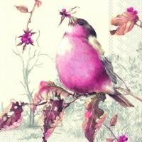 Salvrätikud linnuga