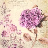 Salvrätikud lillega