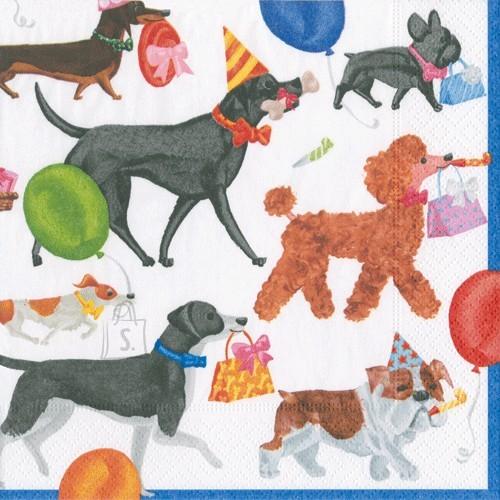 Salvrätikud koertega