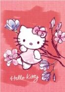 College ruuduline kaustik Hello Kitty Aquarelle A4 48 lehte