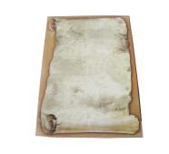 Kartong Papirus A4/25L 170g  beez