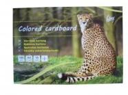 College värviline kartong A4/16L 8-värvi kahepoolne