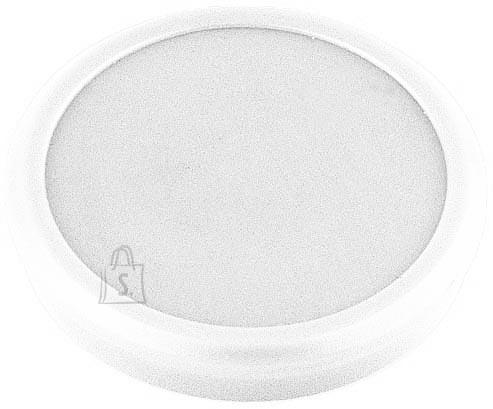 ALCO-Albert tahvlimagnet 6828V10 24mm valge 1tk
