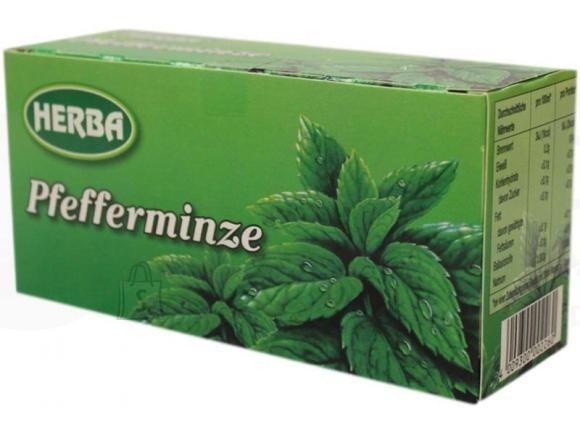 Herba piparmündi tee 20pk