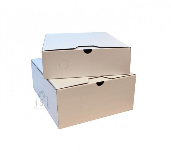 HSK Arhiivikarp HSK HSK-BOX A4/12cm pinnalaotusena, valge