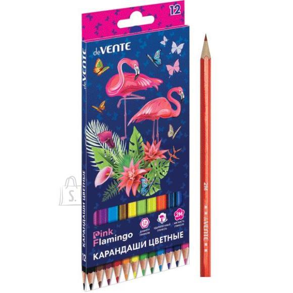 Värvipliiatsid deVENTE Flamingo 12-värvi