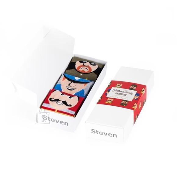 Steven Laste sokkide kinkekarp 3-paari pakis