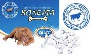 Duvo+ koerte presskont Boneata, 9tk