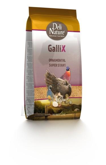 Deli Nature Deli Nature toit kodulindudele Gallix Superstart 4kg
