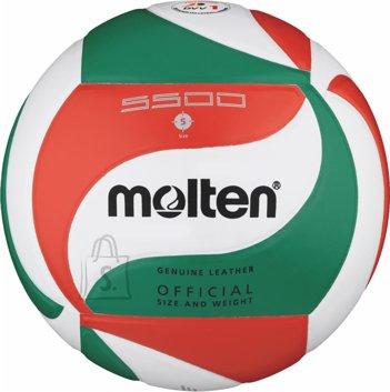 Molten Molten võrkpall V5M5500, nahk, valge/roheline/punane