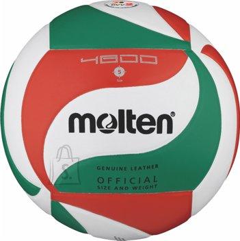 Molten Molten võrkpall V5M4800, nahk, valge/roheline/punane