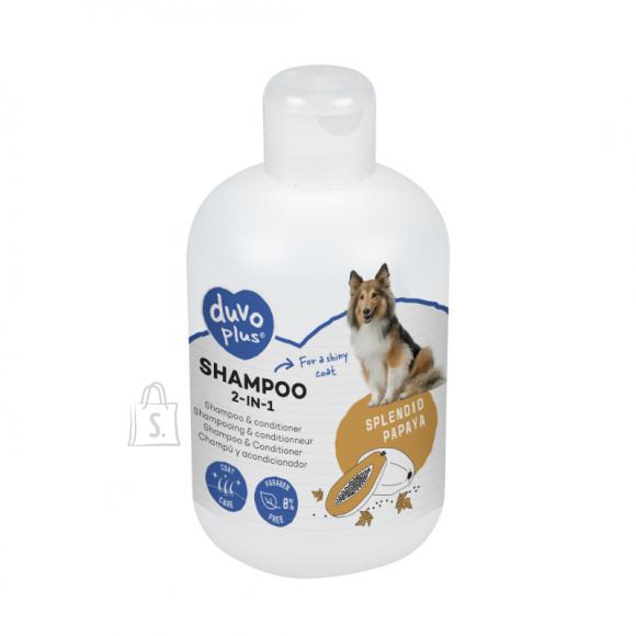 Duvo+ šampoon 2 in 1, 250ml