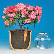 Bambach Lihtne taimede kastmine – keraamilise anduri ja voolikuga, 3tk