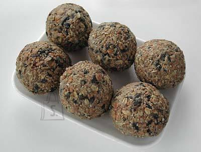 Schwegler Eripakkumine- 5 pakki rasvapalle ja tasuta söötja
