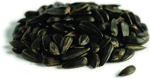 Schwegler Päevalille seemned 5kg paberkott