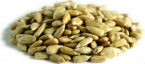 Schwegler Hulgipakend-Kooritud päevalille seemned 8kg