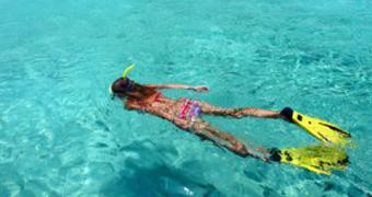 Sukeldumine & snorgeldamine