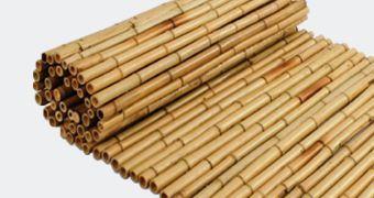 Bambusaiad