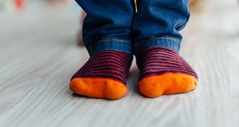 Sokid, põlvikud ja säärised