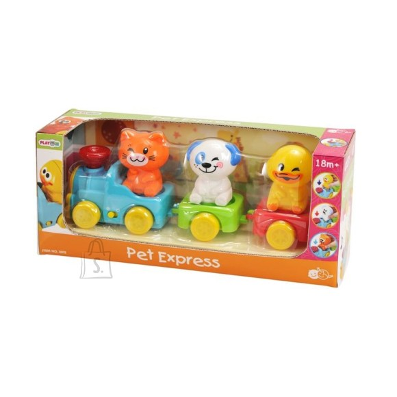 Playgo PLAYGO INFANT&TODDLER rong B/O, 2815