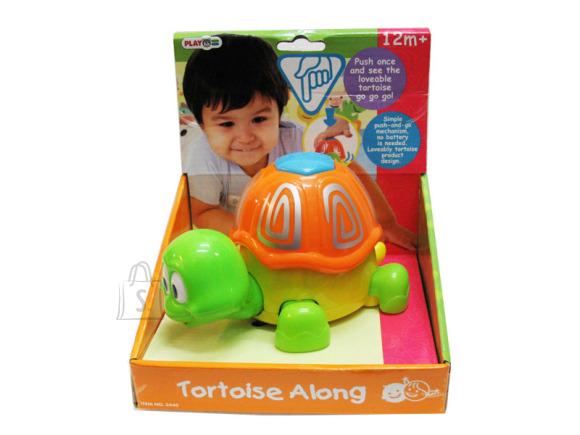 Playgo PLAYGO INFANT&TODDLER mänguasi kilpkonn, 2445