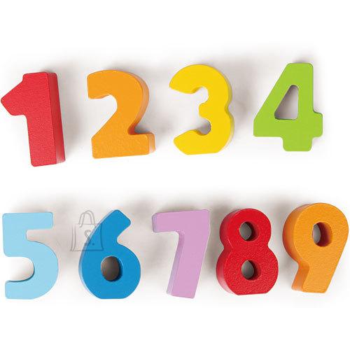 Hape puidust värvilised numbrid, 10 tk