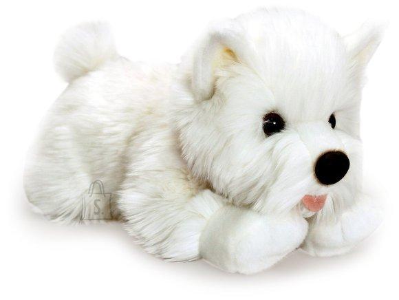 Keel Toys pehme koer Westie, 30 cm