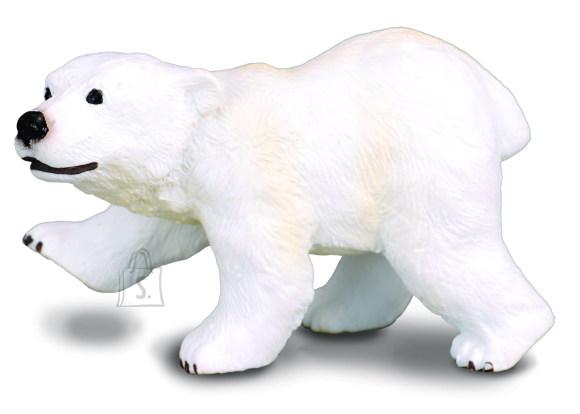 Collecta seisev jääkarupoeg
