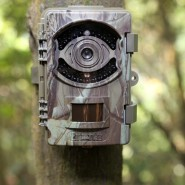 Bushwhacker Big Eye D3 rajakaamera, nähtamatu IR LED 940nm