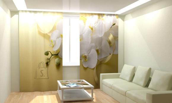 Fotokardinad White Orchid 300x260cm