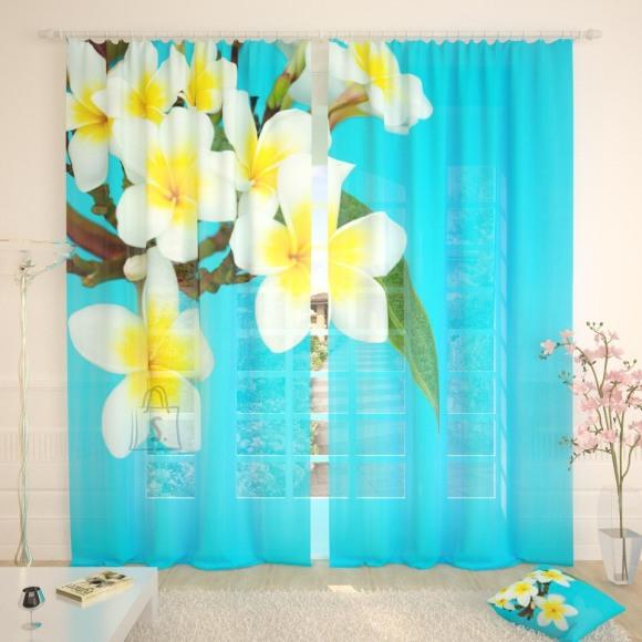 Tüllkardinad Tropical Flowers Blue 290x260cm