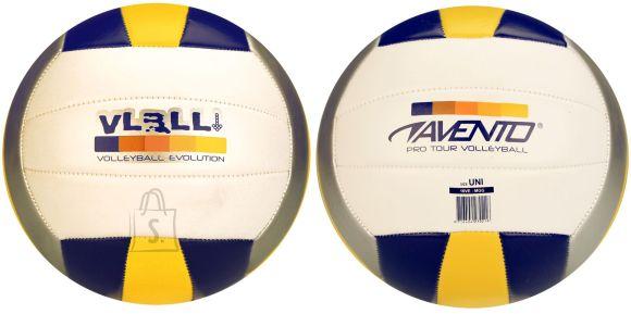 Avento võrkpall 16VE