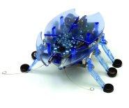 Hexbug robotputukas Beetle