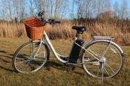 Elektrijalgratas TDY01Z