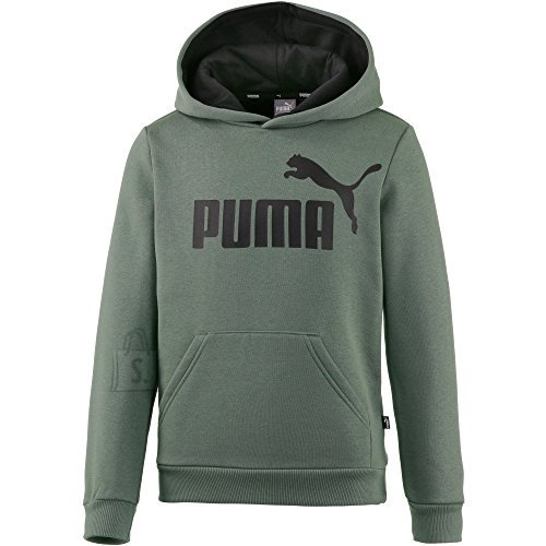 Puma ESS Logo Hoody FL B Laurel Wreath