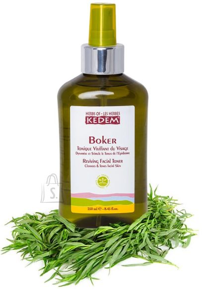 Herbs of Kedem Boker hommikune näovesi 250 ml