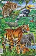 Larsen pusle džungel (India, Kagu-Aasia) 30 tk