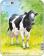 Larsen pusle farmiloomad 5 tk